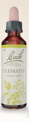 Clematis - Floral de Bach