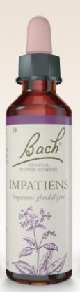 Impatiens - Floral de Bach