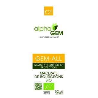 Gem-All, Complexo 1 Proteção