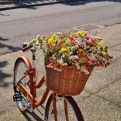 Bicicletas Senhora