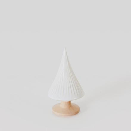 Pinheiro pequeno branco - A Árvore e o seu zingamocho