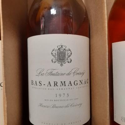 Bas Armagnac La Fontaine de Coincy 70cl