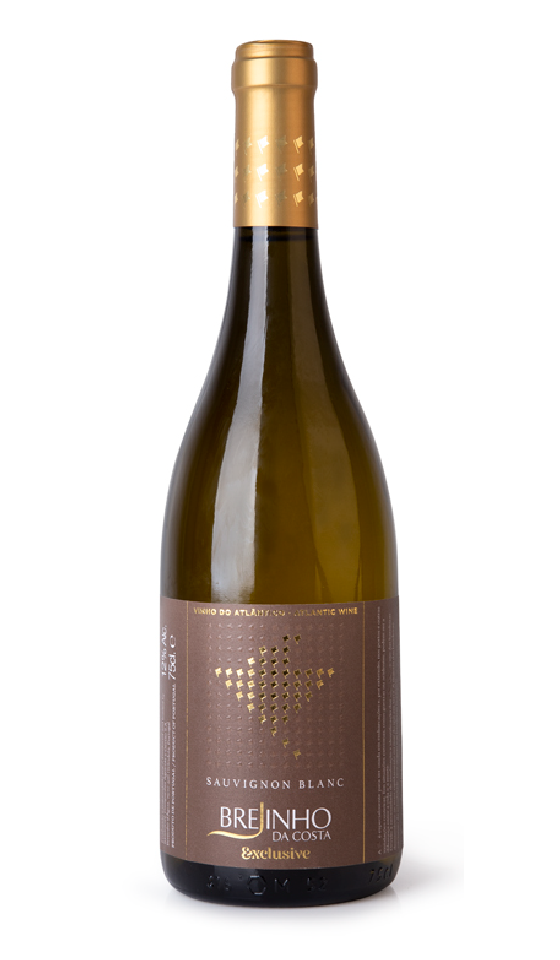 Quinta Brejinho da Costa E. Sauvignon Blanc 2017