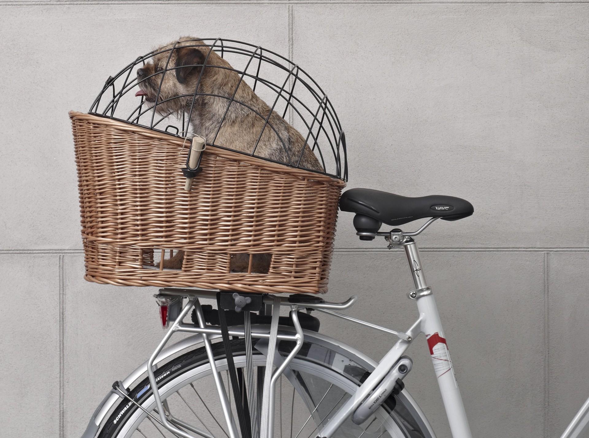 Cesto BASIL Pasja - cesto para transporte de animais