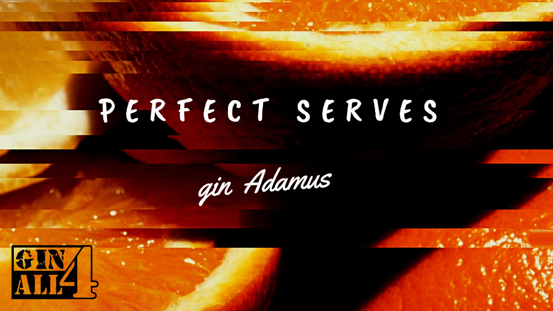 Perfect Serves - GIN ADAMUS