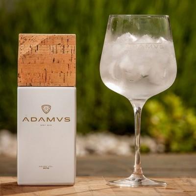 Gin Adamus c/Copo