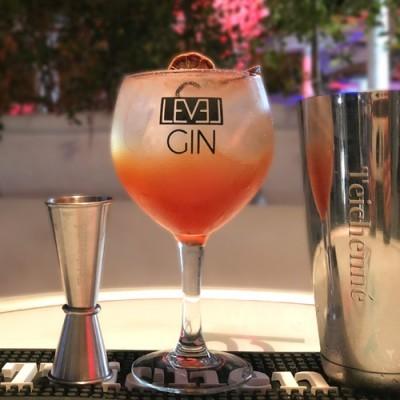 Gin Level Premium