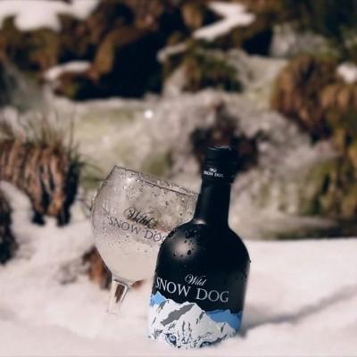 Gin Wild Snow Dog Dry c/Copo