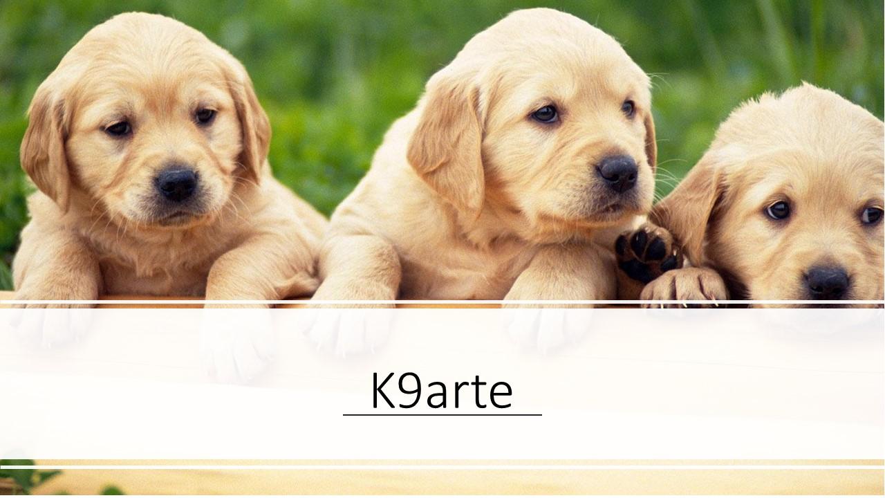 k9arte
