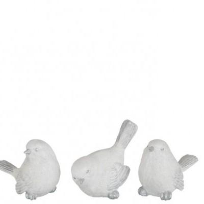 Cada Pássaro Branco com Brilhos