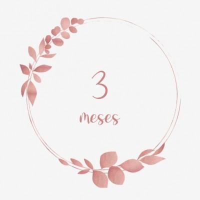 3 meses+