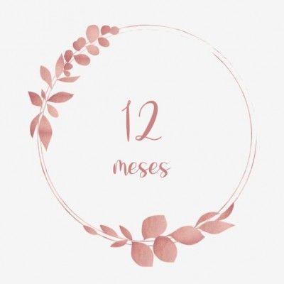 12 meses+