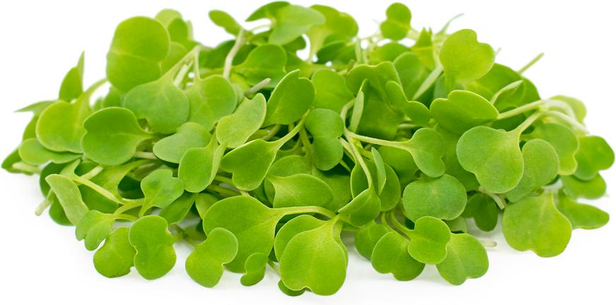 Micro Vegetal Rúcula 30gr