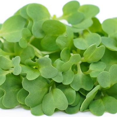 Micro Vegetal Mostarda 30gr