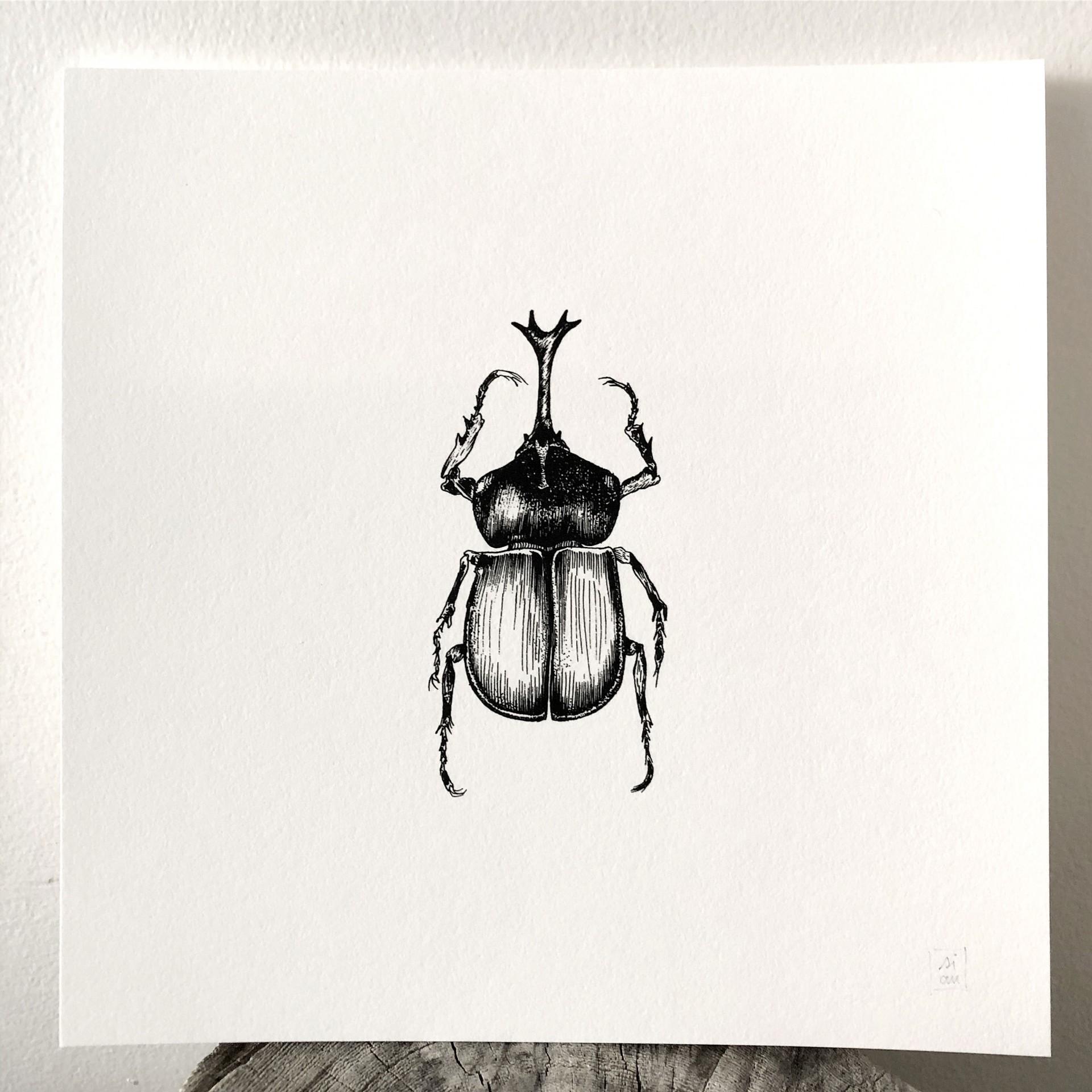 Fine Print Paper 'Insecto' Susana Antão Illustration