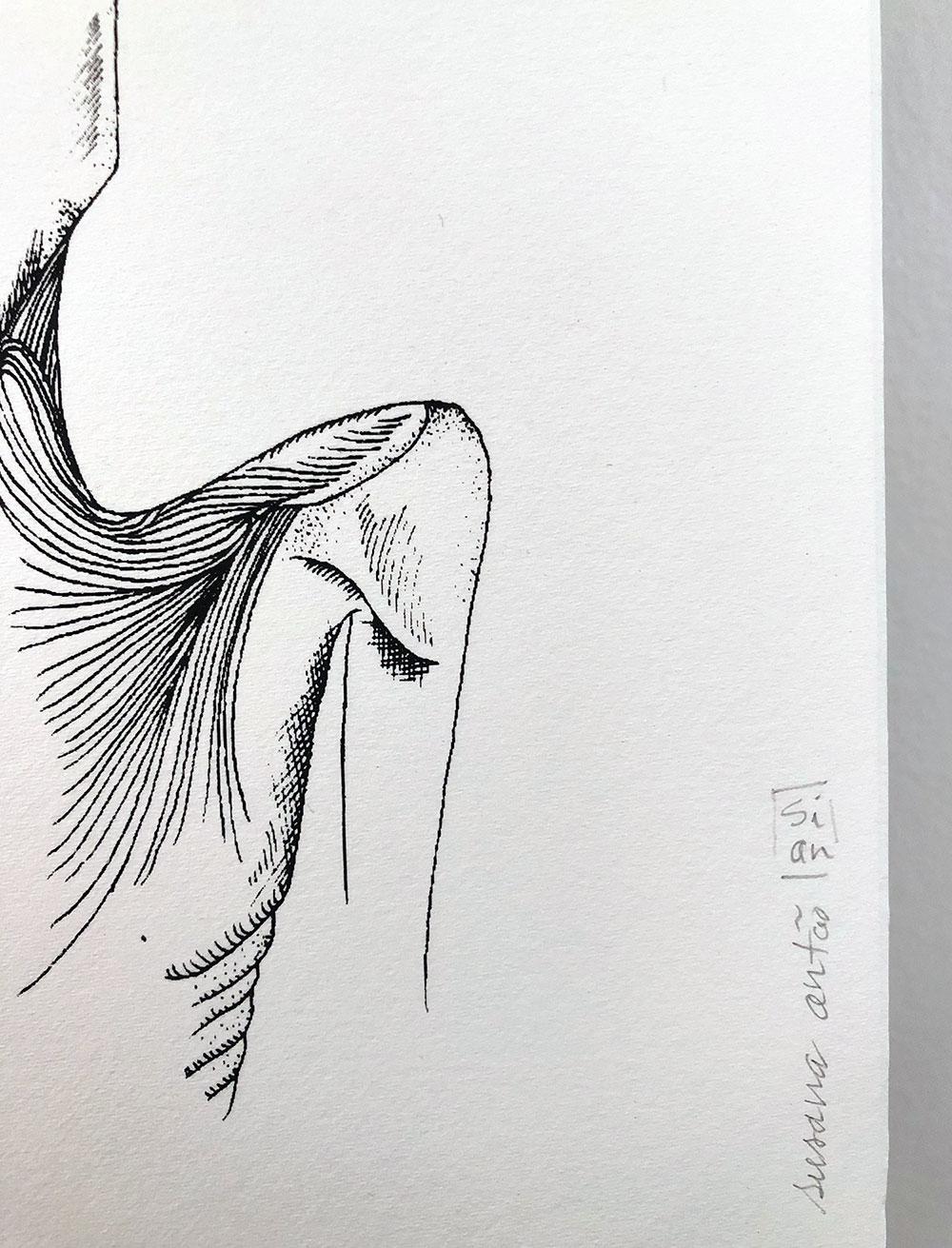 Serigrafia 'Miss' Susana Antão Illustration