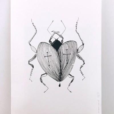 Serigrafia 'Insect+' Susana Antão Illustration