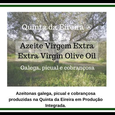 Azeite Virgem Extra - Galega, picual e cobrançosa - 2L