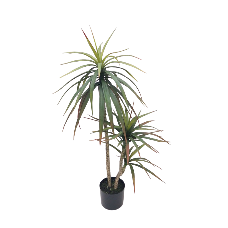 Yuca c/Vaso 100cm