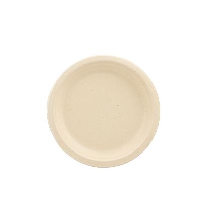Conjunto 10 Pratos Biodegradáveis 18cm