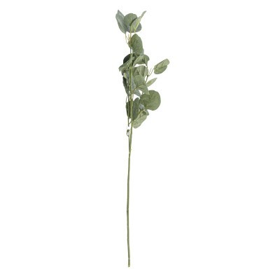 Haste eucalipto 65cm