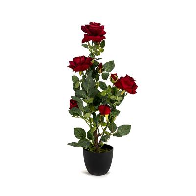 Rosas aveludadas com vaso